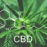 is cbd right for me
